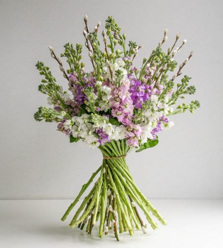 Sweetly scented stocks and pussy willow, mothers day flowers, by Garland
